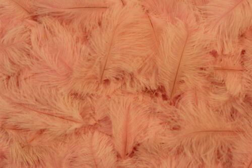 Baby-Pink-No.39