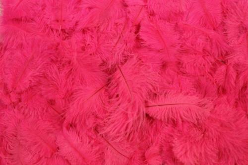Bright-Pink-No.1