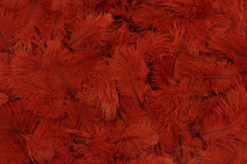 Dark-Red-No.18