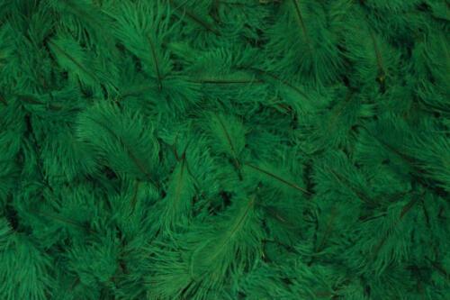 Emerald-Green-No.3