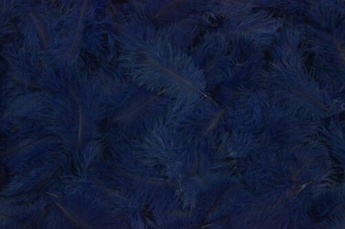 Royal-Blue-No.28