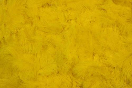 Yellow-No.9